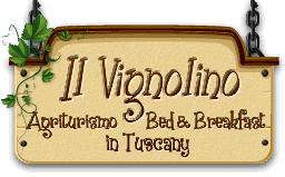 Bed and Breakfast in Toscane à Florence Italie Italy Il Vignolino • Site officiel